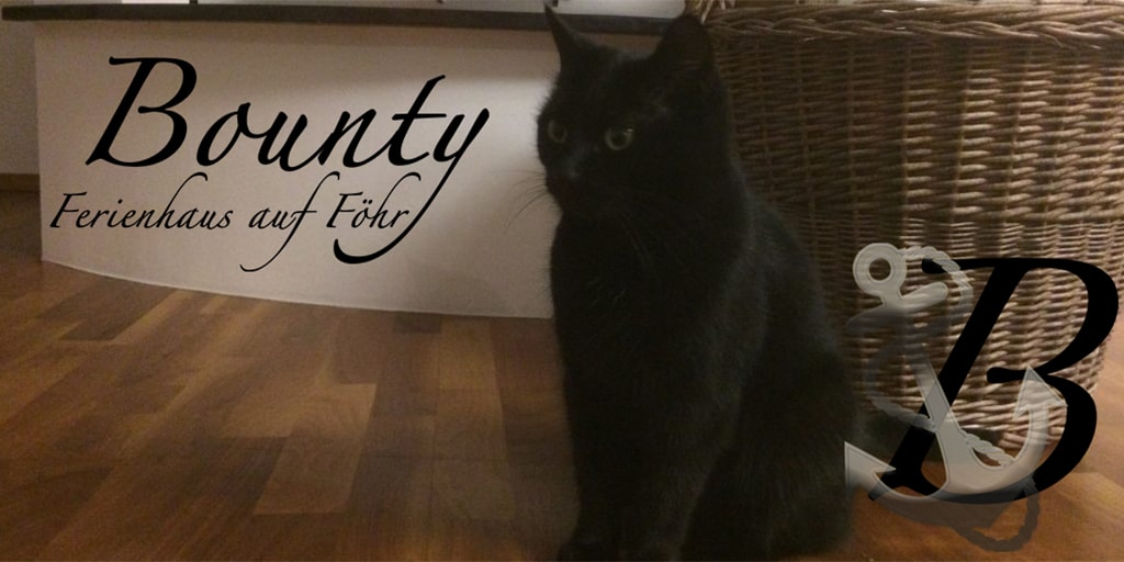 Bounty – was heißt das eigentlich?